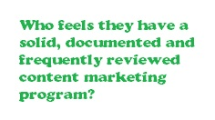 Who has a content marketing plan in place?